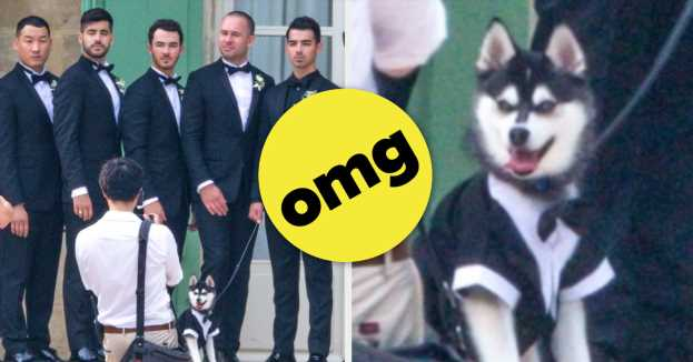 We Need To Talk About This Cute Groomsman At Sophie Turner And Joe Jonas's Wedding