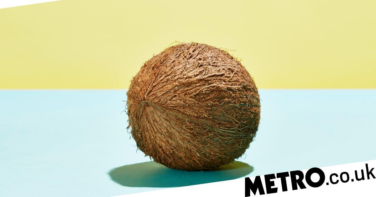 'Spell coconut' is the newest meme that might spice up your sex life