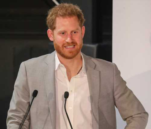 Wait, did Prince Harry already attend the Camp Google summit in Italy?
