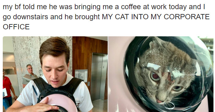 24 Adorable And Hilarious Animal Tweets To Help You Get Through A Bad Day