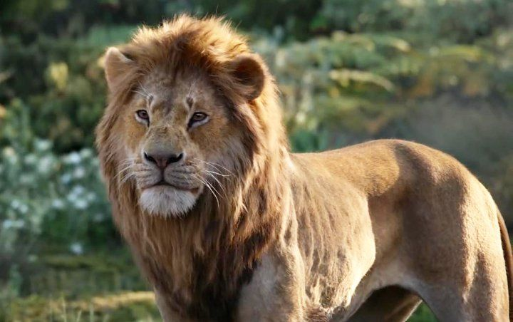Why Disney Won't Acknowledge 'The Lion King' Remake as the Top Grossing Animated Film Ever