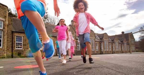 Half term and school term dates for 2019-2020 –everything you need to know