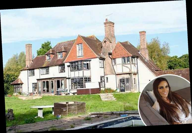 Katie Price shows off her grotty garden after moving back into her £2m mansion – The Sun