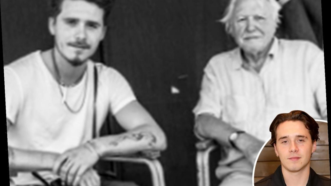 Brooklyn Beckham is unrecognisable with goatee and spiked hair in throwback shared by dad David
