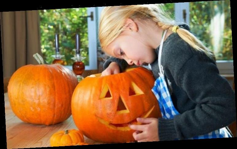 How to dry out a pumpkin after carving