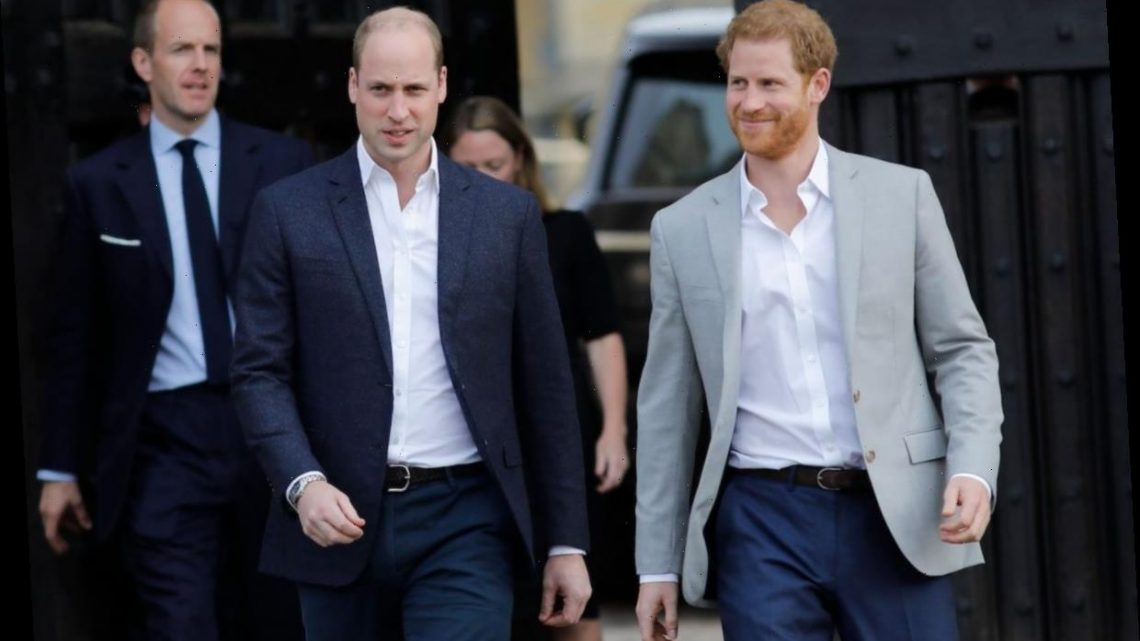 Royal Expert Claims the Way Prince William 'Felt So Protective' of Prince Harry 'Robbed Him of His Youth'
