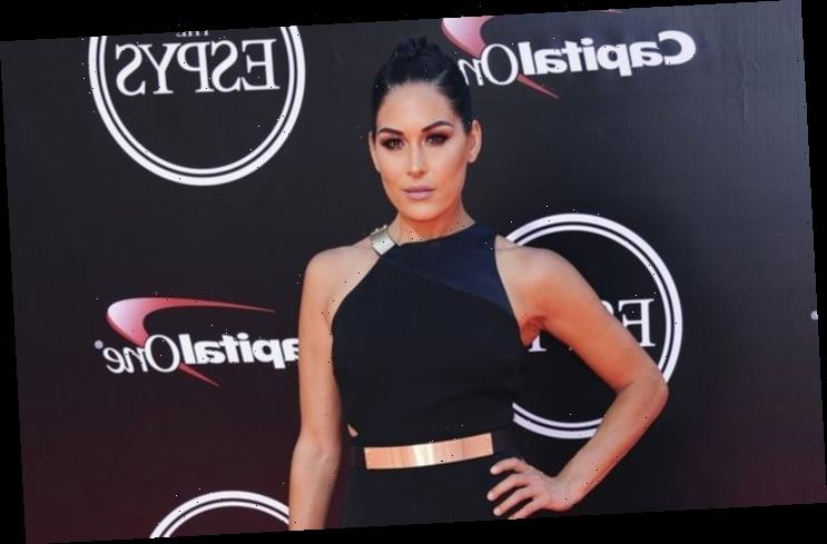 Brie Bella Has Her Tubes Tied After Welcoming Second Child