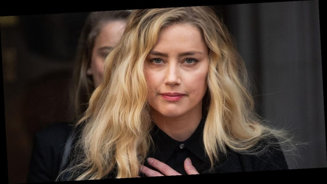 Amber Heard did not poo in Johnny Depp's bed – it was their dog – judge rules
