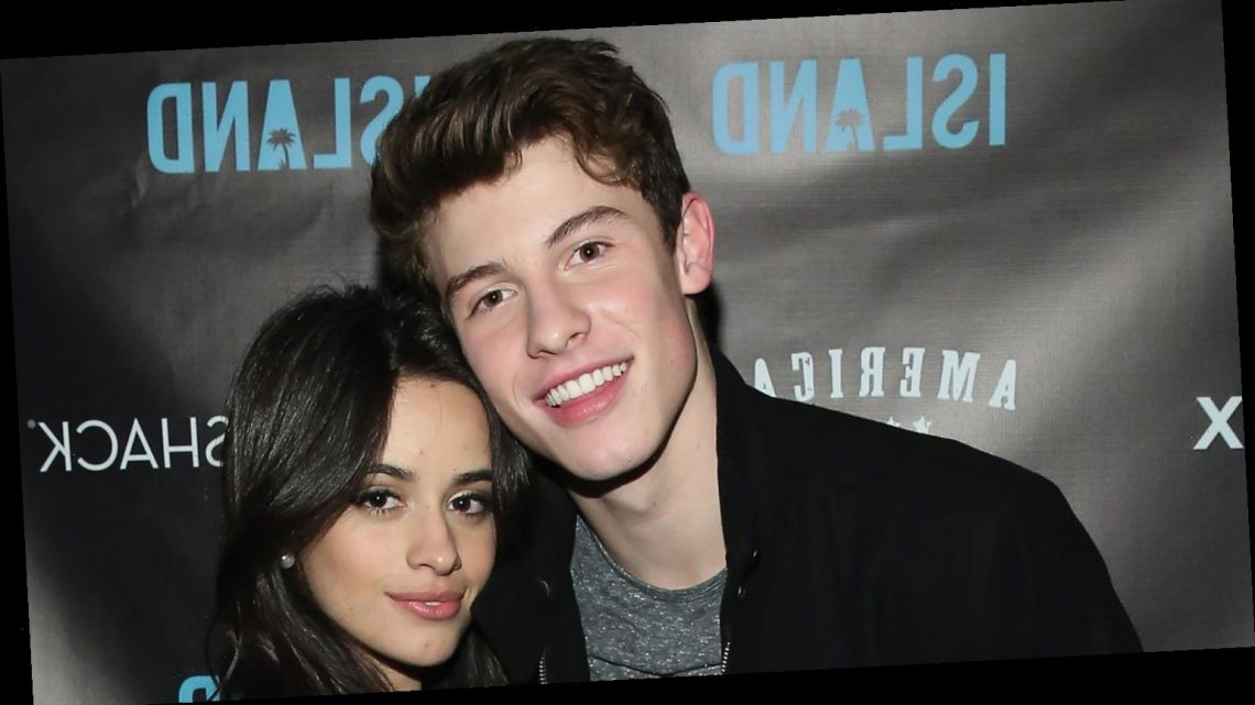 Camila Cabello Helped Shawn Mendes With Body Confidence & Song Ideas