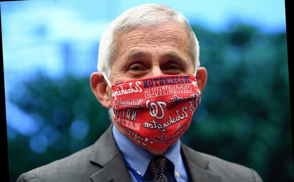 Fauci's plea 'Wear a mask' tops list of 2020 notable quotes