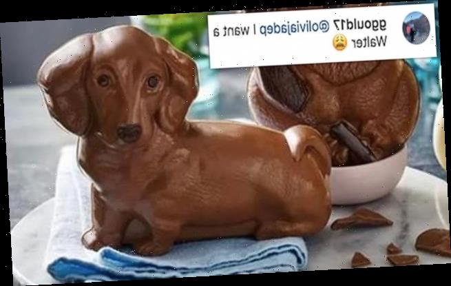 M&S delights fans by launching a £5 milk chocolate sausage dog