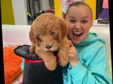 JoJo Siwa came out: 'What matters is that you guys know that no matter who you love, it's OK'