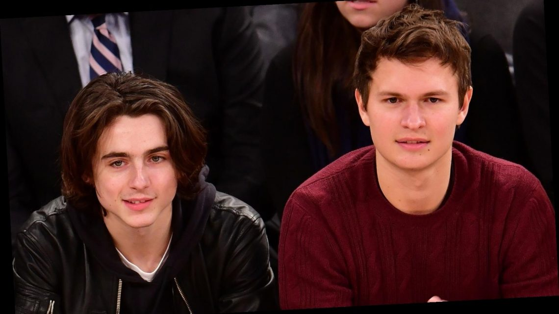 Inside Timothee Chalamet's Surprising History With Ansel Elgort