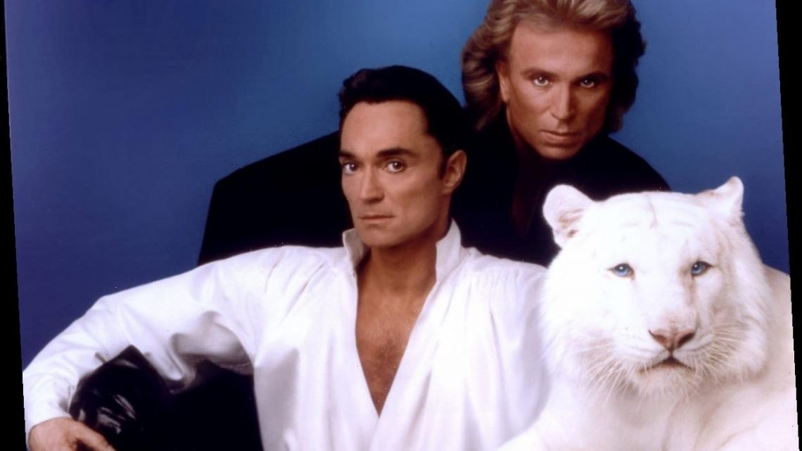 Siegfried & Roy Once Made $52 Million a Year Until Infamous Tiger Mauling Put an End to Their Las Vegas Act