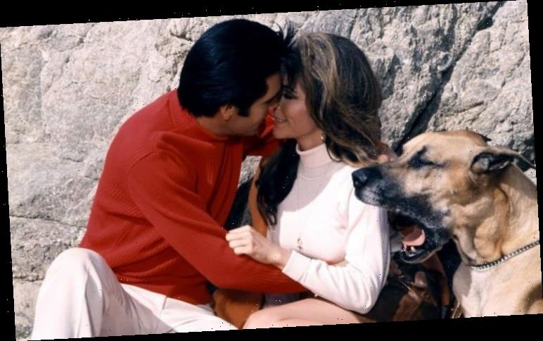 Elvis Presley's forbidden romance with Nancy Sinatra on set of Speedway