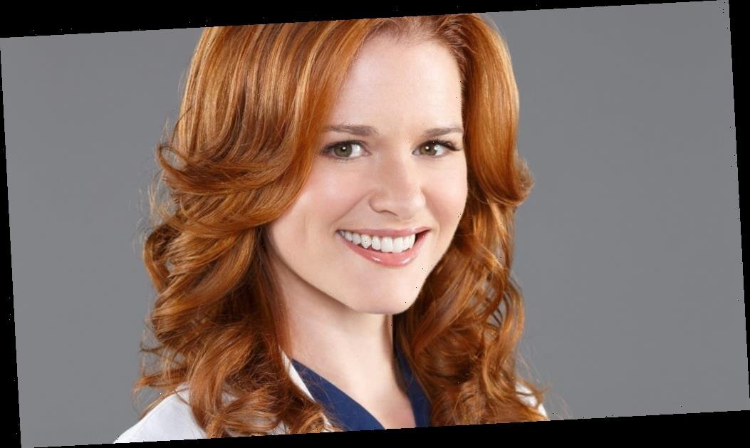 'Grey's Anatomy': Sarah Drew's Return as April Kepner Has Fans Itching for More Cast Reunions in Season 17
