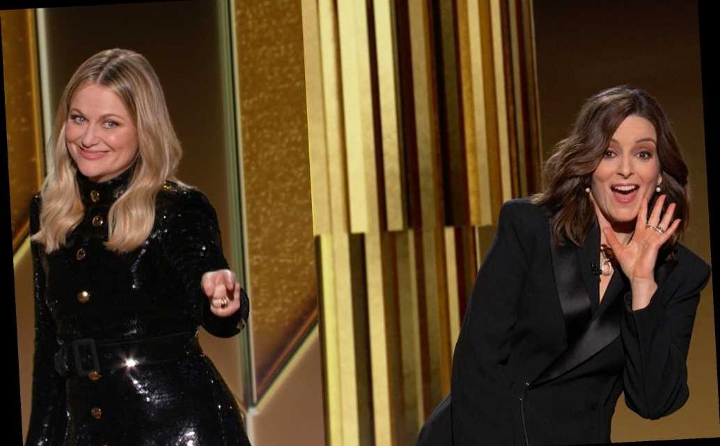 Amy Poehler Reflects on Hosting the Golden Globes Virtually with 'Wonderful' Friend Tina Fey