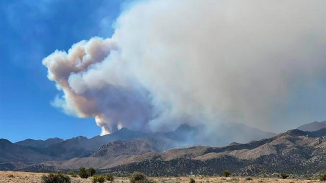 Arizona's Flag Fire surges in size, prompting evacuations
