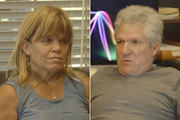Little People, Big World Trailer: Amy Roloff Torn Between Husbands?