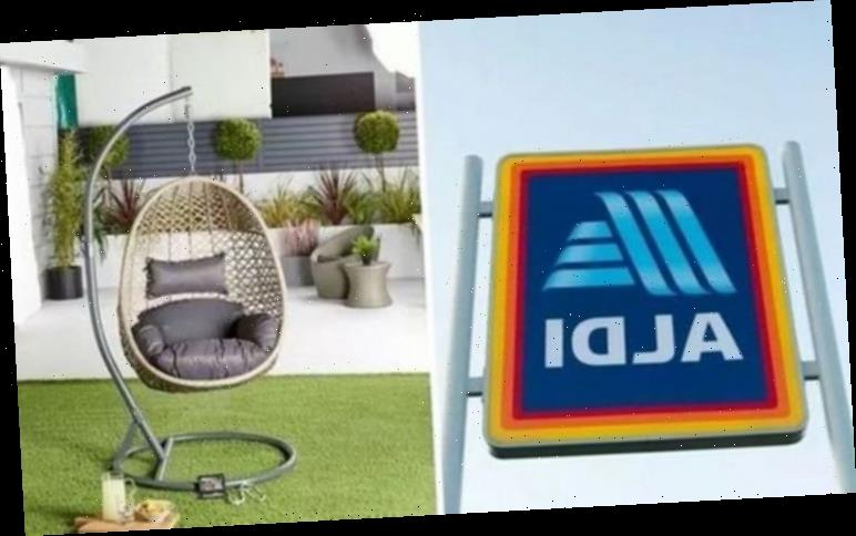 Aldi egg chair sells out AGAIN! Here are some alternatives available at other retailers