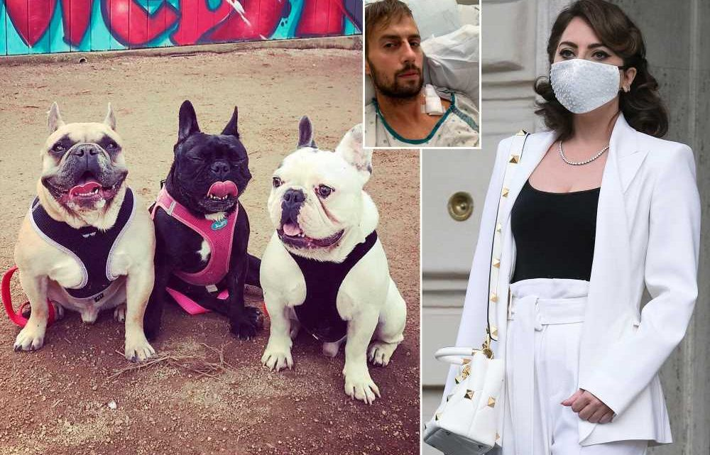 Lady Gaga dog-napping suspects tailed walker down secluded street before attack