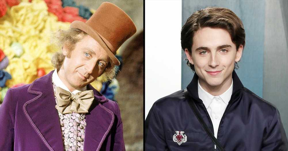 Timothee Chalamet Fans React to Willy Wonka Casting News: 'I Want to See'