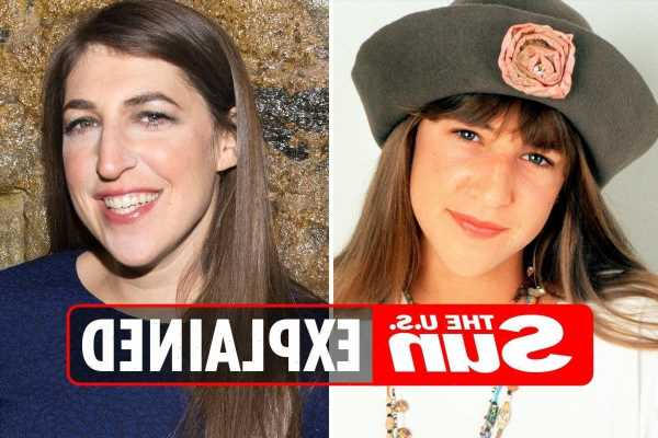 What is Mayim Bialik's net worth?