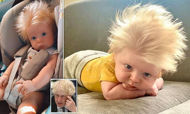 Baby is constantly compared to Boris Johnson because of his wild hair
