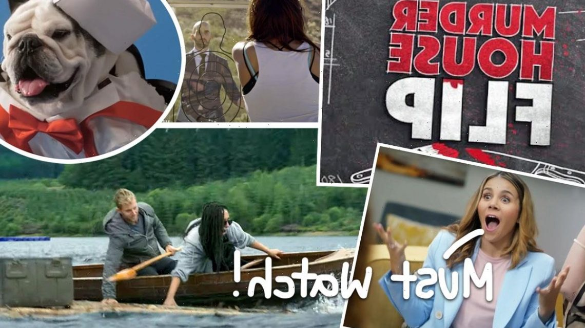 Craziest Reality TV Shows You Should Be Watching Right Now!
