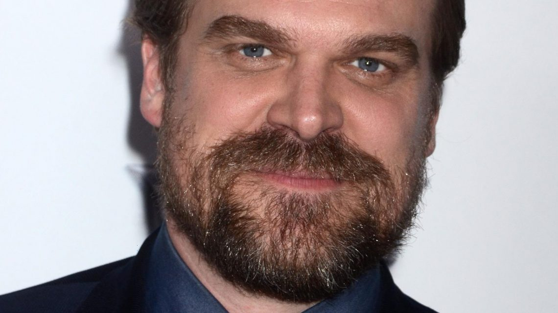 David Harbour Reveals The Best Thing About His Las Vegas Wedding With Lily Allen