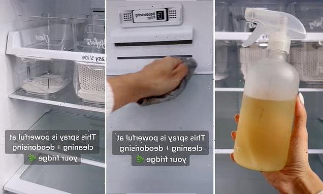 Mum's recipe for a DIY cleaning spray that will leave fridge sparkling