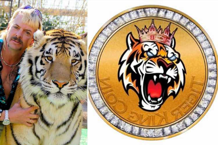 What is Tiger King crypto and why has the price increased?