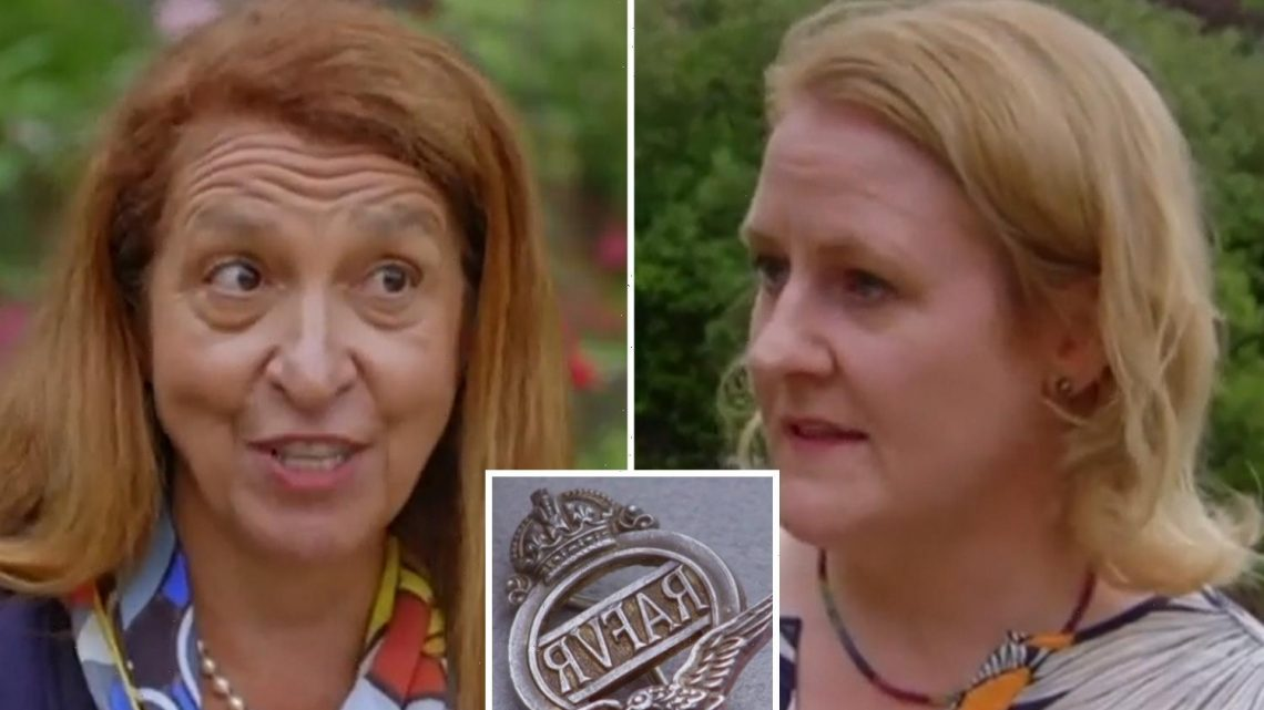 Antiques Roadshow guest warned she'll cause 'absolute frenzy' if she sells mum's VERY rare RAF badges