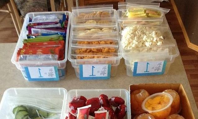 Mum shares the 'bin' lunchbox system she uses with her kids
