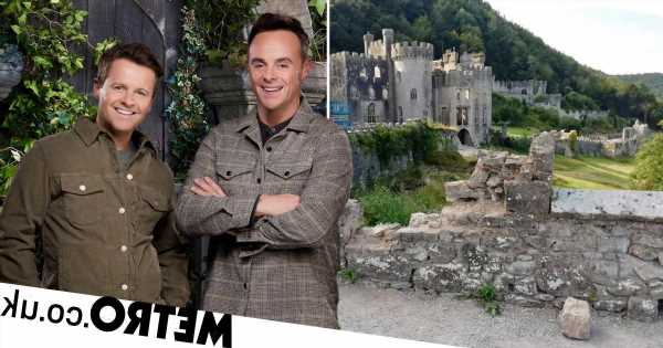 I'm A Celebrity castle vandalised hours before hand over to ITV