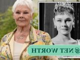 Judi Dench net worth: The star amassed huge fortune after debuting as a snail