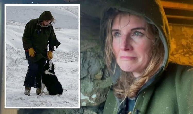 Our Yorkshire Farms Amanda Owen shares sad news from the farm after question from fan