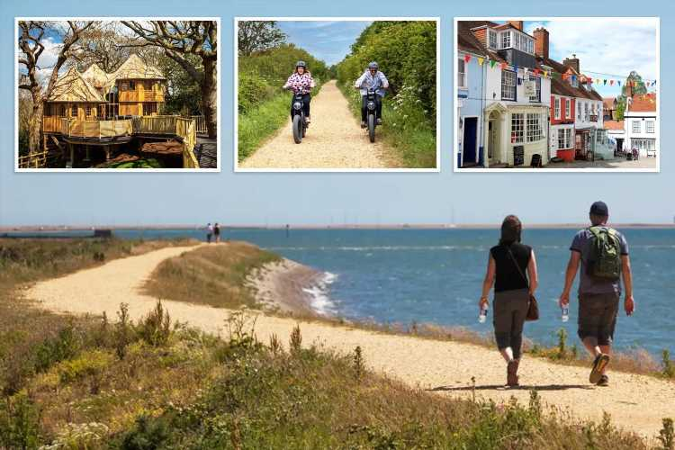 Take a trip to Lymington to enjoy the timeless beauty of the New Forest